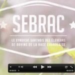 Découvrez la vidéo  «la charolaise en Sarthe»