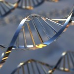 Découvrez l'Offre génomique du HBC