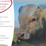 Station d'Evaluation de Jalogny (71) : vente aux enchères le 17 février