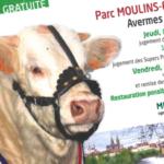 Super Finale de Moulins 2017: jeudi 30 novembre au Parc Moulins Expo