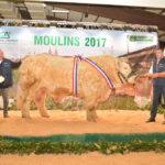 Découvrez le Palmarès de la Super Finale de Moulins 2017