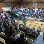 UNE 9 ÈME VENTE AUX ENCHÈRES RÉUSSIE POUR LA STATION « TAUREAUX À GÉNISSES DU MARAULT (58)