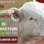 Station «BIEN NAÎTRE» du Marault (58): Faites votre pré-selection pour la vente de ce jeudi 24 janvier, 14H