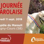 Concours National Veaux et Vente Nationale aux enchères, le 11 septembre à Magny-Cours