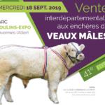 Mercredi 18 septembre:  Vente interdépartementale des Veaux Mâles à Moulins (03)