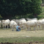 FIERS DE NOTRE AGRICULTURE !  COURAGE À TOUS,  PRENEZ SOIN DE VOUS !