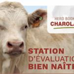 Station Bien Naître 2021-2022